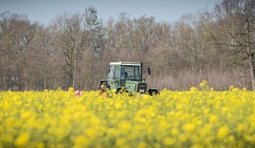 Zwischenfruechte-Humus-regenerative-landwirtschaft