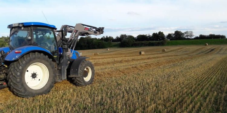 Erntezeit-Getreide-Stroh-mit-EM-Behandeln-Bartl-Gamml-EM-Chiemgau