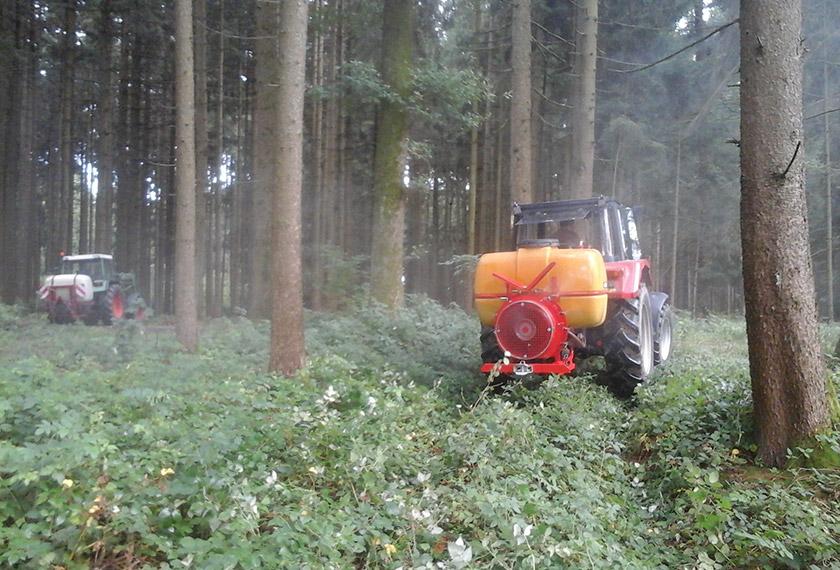EM-Vernebelung im Wald nach dem Rosenheimer Projekt