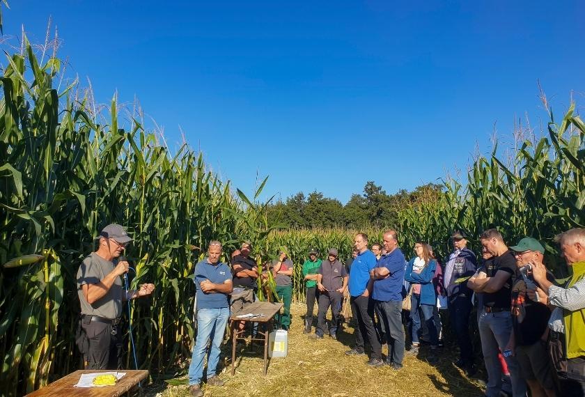 Teilnehmer im Mais hören Dietmar Näser zu