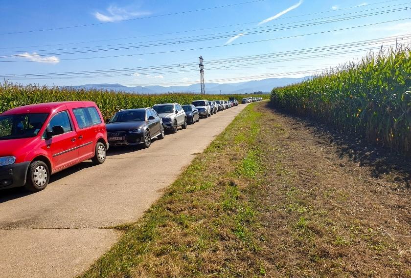 Autos der Teilnehmer am Maisfeldrand